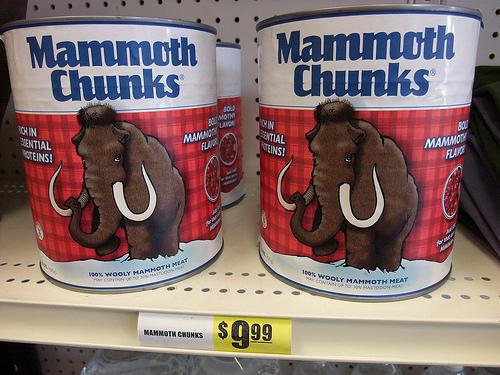 Mammutfleisch